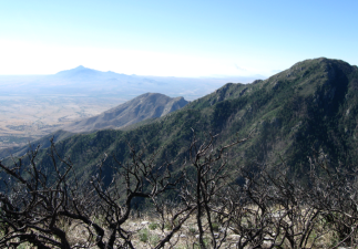 View from Huachuca Mountains in Arizona